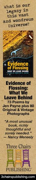 Evidence of Flossing: What We Leave Behind by Jen Payne